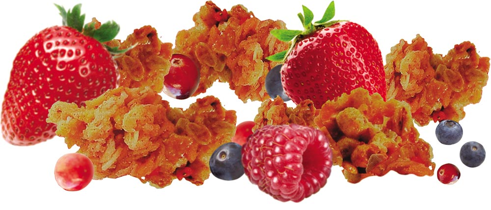 granola-fruits